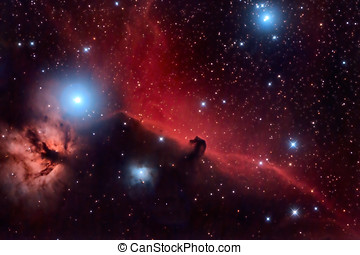 Horsehead Nebula and Flaming Tree in the Constellation Orion...