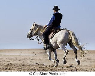 horseman on the beach