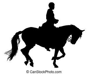 Horseman rides four