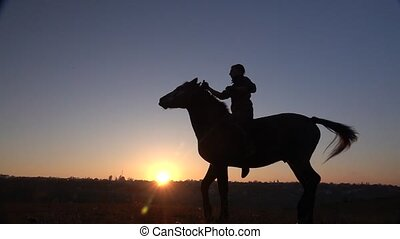 Horseman sits on a horse and gives him two legs in sunset ....