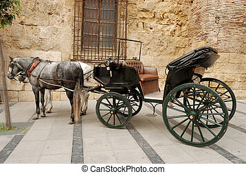 Horses and carriage for sightseeing in Cordova, Spain