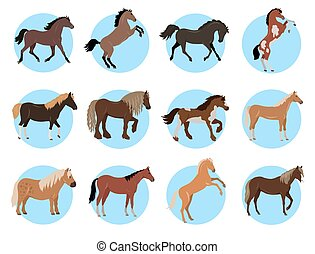 Horses Colourful Banner in Blue Circles on White