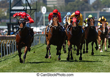 Horses come running toward the camera during a horse race on the grass track.