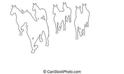 horses galloping - separated on white screen