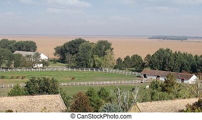 horses in corral on ranch farmland landscape