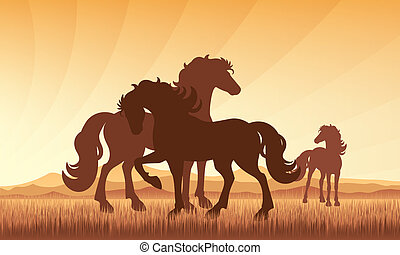 Horses in field on sunset background vector silhouette...