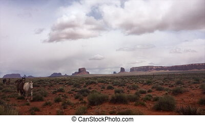 Horses in the Rain Monument Valley USA