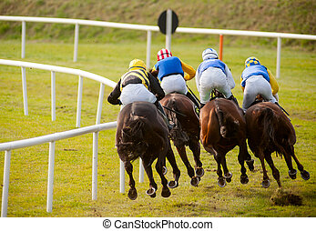 horses racing the track