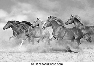 Horses run in desert