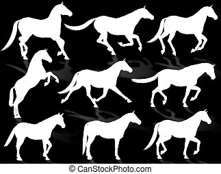 Horses silhouette - Black horse silhouettes in different...