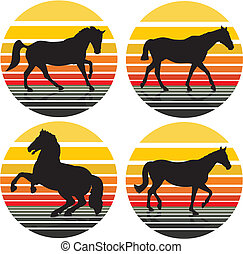 horses silhouettes -  background