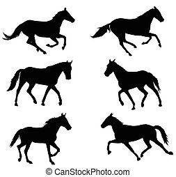 horses silhouettes collection