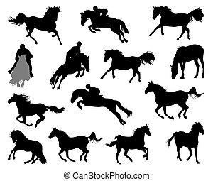 horses  - Silhouettes of horses on white background, vector