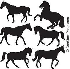 horses - vector silhouettes