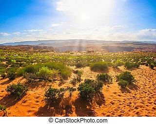 Horseshoe Bend desert