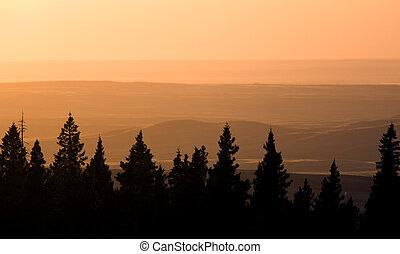 Horseshoe Canyon Alberta Canada