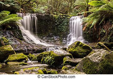 Horseshoe Falls, Mt. Field National Park, Tasmania, Australia