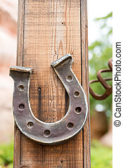 Horseshoe lucky horse