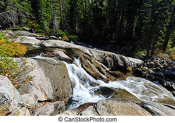 Horsetail Fall Trail area, Lake Tahoe