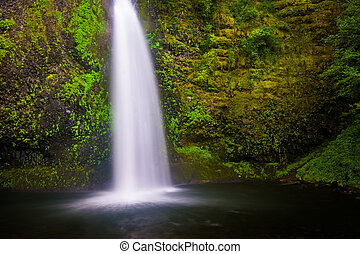 Horsetail Falls, in the Columbia River Gorge, Oregon.