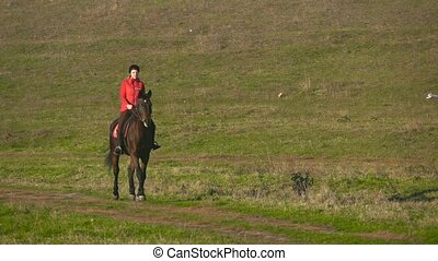 Horsewoman galloping on a green field on horseback. Slow motion