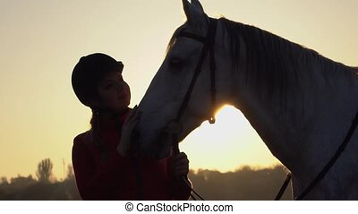 Horsewoman is standing in the field and stroking the horse a beautiful sunset. Slow motion. Close up