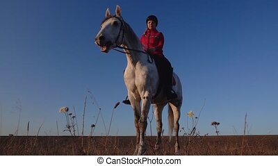 Horsewoman on a white horse in the field stands and admire the view. Slow motion