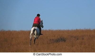Horsewoman riding a horse galloping across the field. Slow...