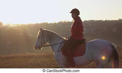 Horsewoman riding a horse in the middle of a field . Slow...