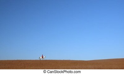 Horsewoman riding a horse strokes a white horse standing in a field . Slow motion. Side view