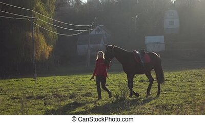 Horsewoman walks through the meadow with a brown stallion. Slow motion