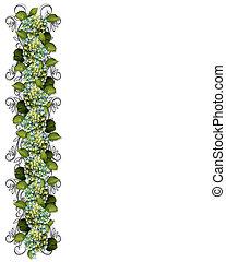 hortensia, fleurs, frontière