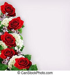 hortensia, fleurs, roses, lilas, rouges