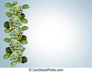 hortensia, frontière, floral