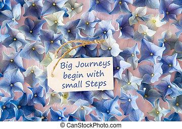 hortensia, plat, leggen, noteren, groot, reizen, beginnen, kleine, stappen