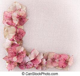 hortensie, blütenblätter, in, boden, links, ecke