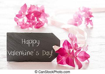 hortenzia, kivirul, szöveg, boldog, valentines nap