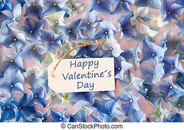 hortenzia, lakás, dal, szöveg, boldog, valentines nap