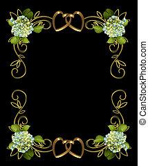 hortenzia, virágos, képben látható, fekete