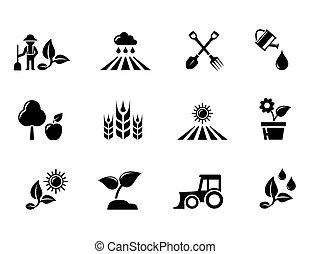 horticultura, jogo, jardinagem, ícones, conceito, agricultura, ou