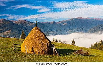 hory, komín, mladický louka, seno