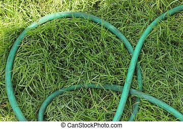 Hose grass green