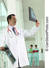 Hospital doctor looking at an xray