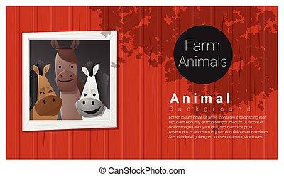 hospodaření animální, grafické pozadí, s, kůň