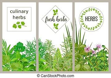 hospodaření prostořeký, vaření, herbs., dát, o, kuchařský, karta., zeleň, bazalka, vektor, ikona, hydroponik