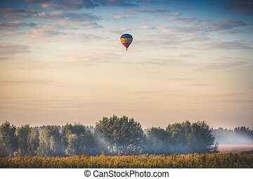 hot air balloon flying over forest at early morning -...