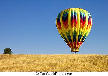 Hot Air Balloon in a Field