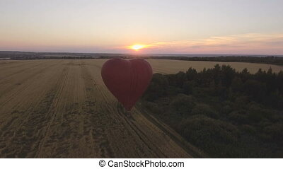 Hot air balloon in the sky over a wheat field.Aerial view