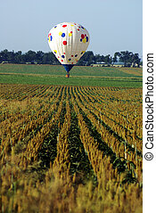 Hot Air Balloon Over Field