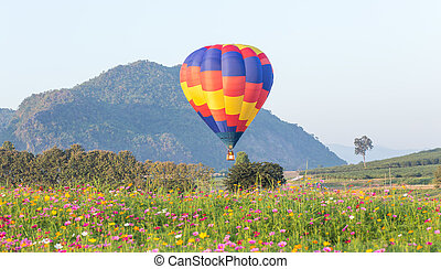 Hot air balloon over flower fields with mountain background